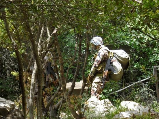 Combattants dans la forêt