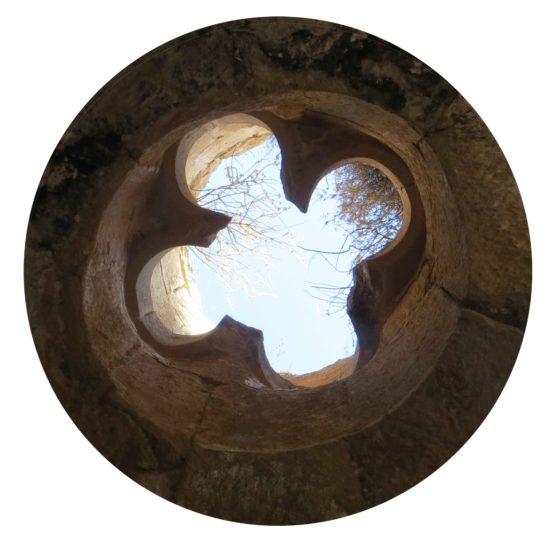 Figure 8 : Oculus quadrilobé (Tous droits réservés Bertrand Riba)